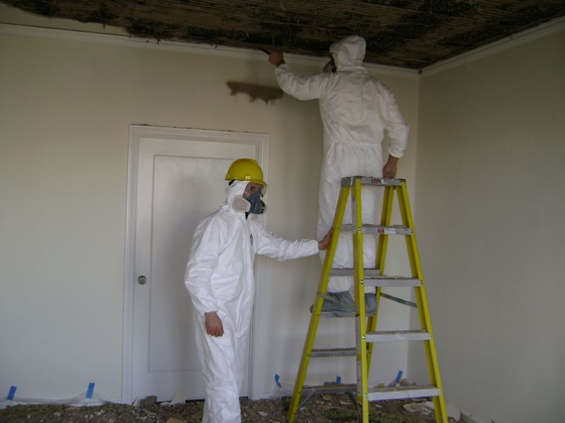 7 Important Facts that Most Mold Inspectors Will Never Tell You